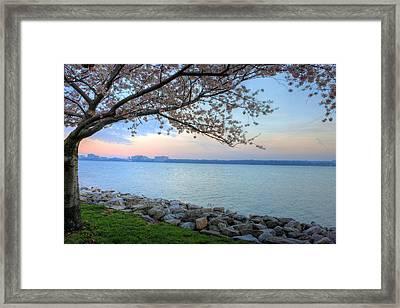 Pretty Potomac Framed Print