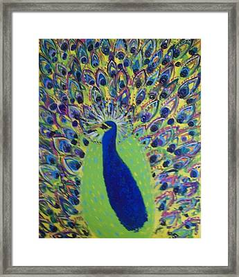 Pretty Proud Peacock Framed Print by Seaux-N-Seau Soileau