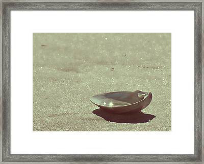 Pretty Seashell Framed Print by JAMART Photography