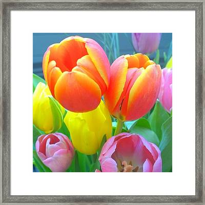 Pretty #spring #tulips Make Me Smile Framed Print by Shari Warren