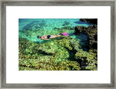 Pretty Woman In Bikini Snorkeling Through Turquoise Water At The Coast Framed Print by Andreas Berthold