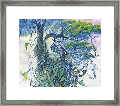 Price Of Freedom Framed Print