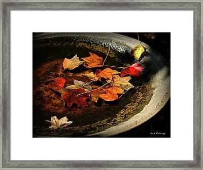 Priceless Leaves Fall Framed Print by Reid Callaway