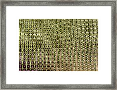 Prickly Pear Abstract # 5271wt Framed Print