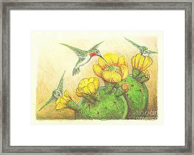 Prickly Punch Framed Print