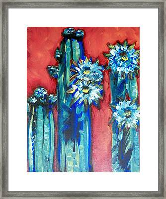 Prickly Sisters Framed Print by Sheila Tajima