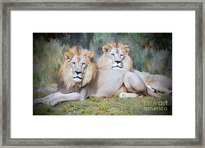 The Pride Of Africa Framed Print