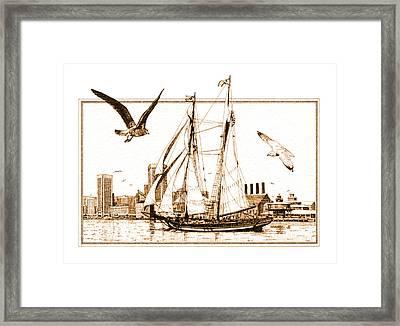 Pride Of Baltimore Framed Print by John D Benson