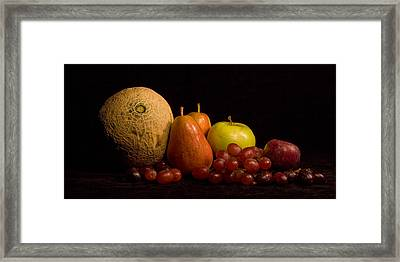 Primavera Framed Print by Levin Rodriguez