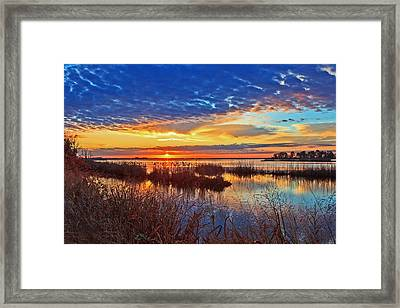 Colors And Reflections Framed Print by Robert Pilkington