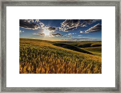 Primed To Finish Framed Print by Mark Kiver