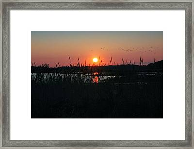 Primehook Sunset Framed Print by See Me Beautiful Photography