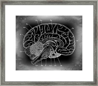 Primordial Mysterious Brain Framed Print by Daniel Hagerman