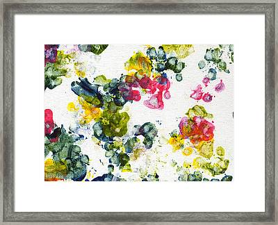 Primrose Framed Print by Antony Galbraith