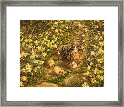 Primrose Path Il Framed Print