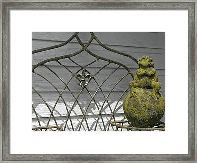 Prince Charming Framed Print by JAMART Photography