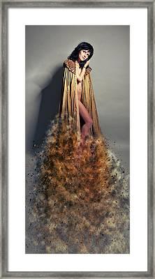 Prince Of....... Framed Print by Nichola Denny