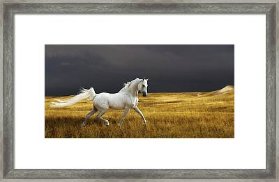 Prince Of The Plains Framed Print by Ron  McGinnis