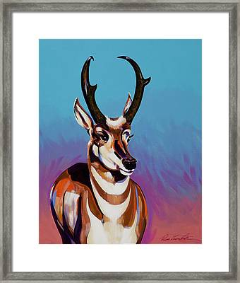 Prince Of The Prairies Framed Print by Bob Coonts