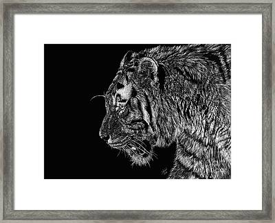 Prince Framed Print by Shevin Childers