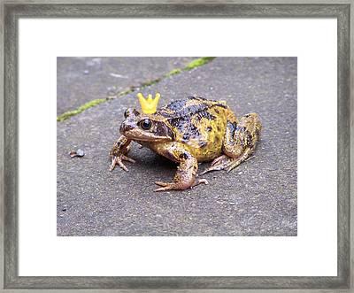 Princess Frog Framed Print