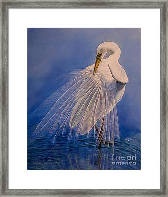 Princess Of The Mist Framed Print by Zina Stromberg