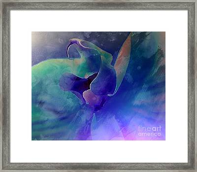 Princess Orchid Framed Print by Krissy Katsimbras