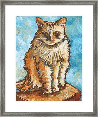Princess Framed Print by Sandy Tracey