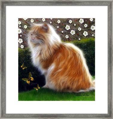 Princess Sheba  Framed Print by Madeline  Allen - SmudgeArt