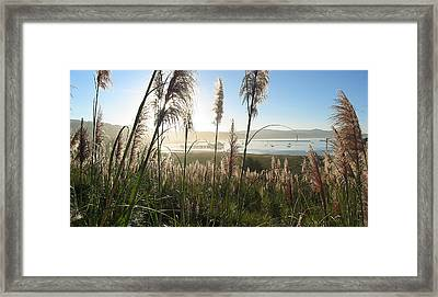 Princeton Harbor. California Framed Print by Bob Bennett