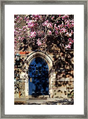 Princeton University Door And Magnolia Framed Print by Olivier Le Queinec