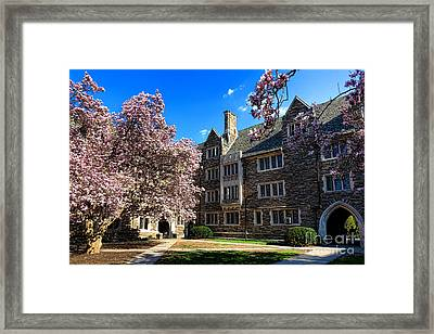 Princeton University Pyne Hall Courtyard Framed Print by Olivier Le Queinec