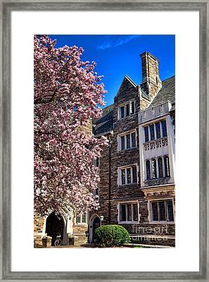Princeton University Pyne Hall Magnolia  Framed Print