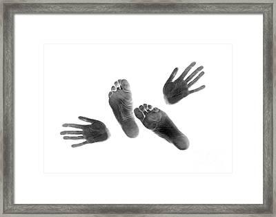Prints #3108 Framed Print by Andrey Godyaykin