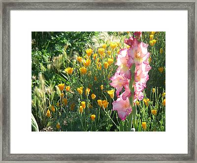 Priscilla With Poppies Framed Print