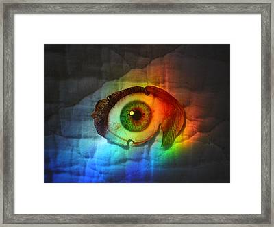 Framed Print featuring the photograph Prismaeye by Douglas Fromm