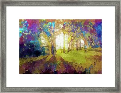 Prismatic Forest Framed Print
