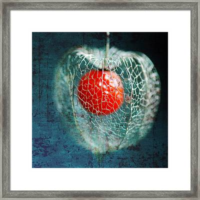 Prison Of Love Framed Print by Philippe Sainte-Laudy