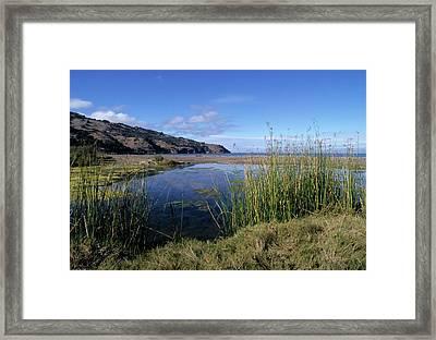Prisoner's Harbor Estuary Framed Print by Don Kreuter
