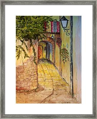 Private Entrance Framed Print by Carol Grimes