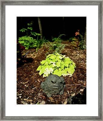 Private Garden Go Away Framed Print by Douglas Barnett