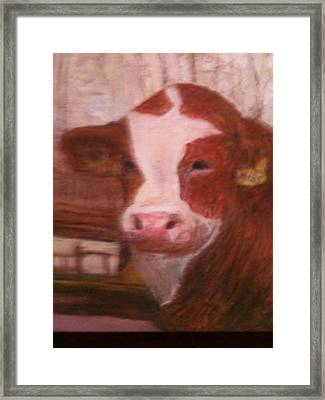 Prized Bull Framed Print by Richalyn Marquez