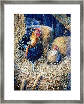 Prized Rooster Framed Print by Hanne Lore Koehler