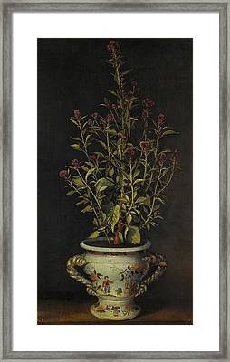 Probably A Gomphrena Framed Print by MotionAge Designs