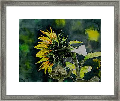 Profile Framed Print by Maria Barry