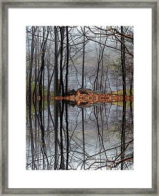 Projecting Contentment Framed Print