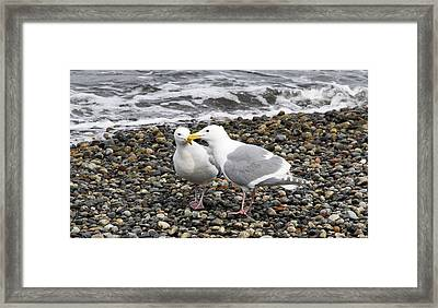Framed Print featuring the photograph Promenade 2 by Sergey  Nassyrov