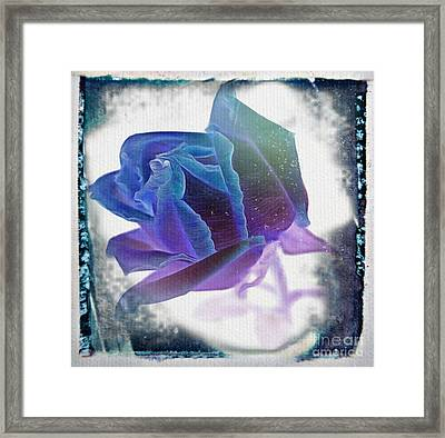 Promise Of Yesterday Framed Print