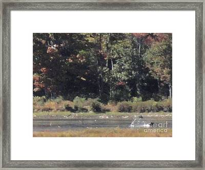 Promised Land Xiii Framed Print by Daniel Henning