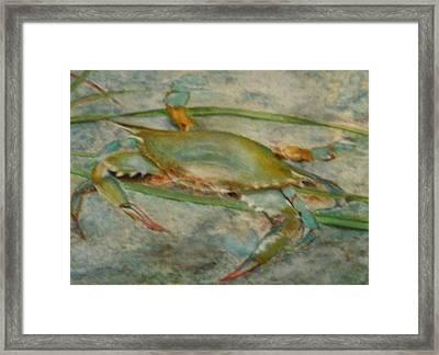 Propa Blue Crab Framed Print